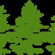 Profile photo of oakleaf landscaping