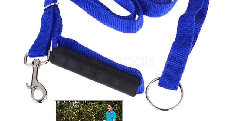 Buy Instant Trainer Pet Leash Dog Traction Blue- $ 1.99