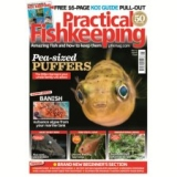 Practical Fishkeeping  now only €6.29 (WAS €6.44 Save 2%) – @ tesco.